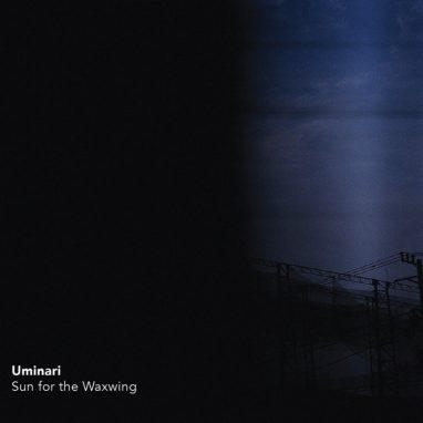 SUN FOR THE WAXWING  ///  UMINARI TRIO